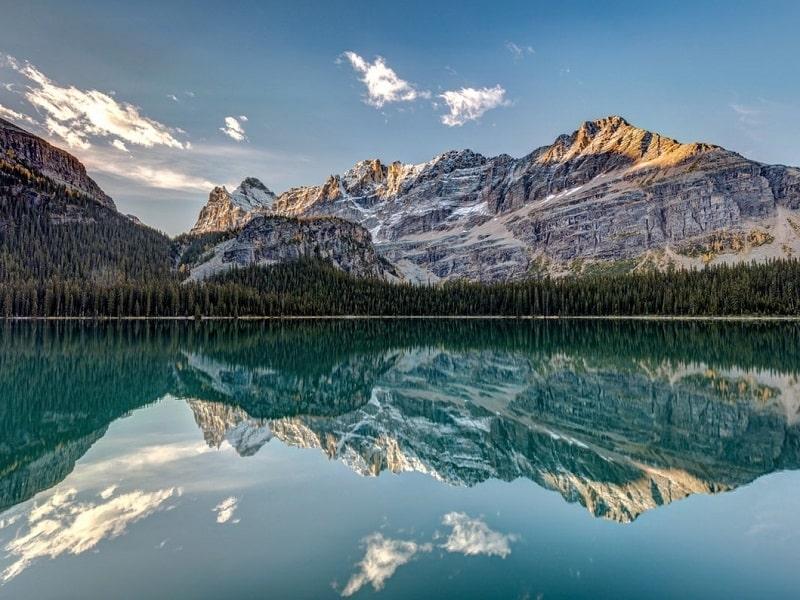 مروری بر نتایج پذیرش های استانی کانادا در آگوست 2021 (10 مرداد تا 9 شهریور 1400)
